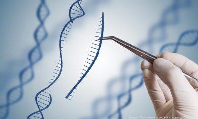 gene future